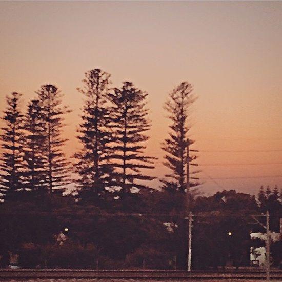 Evening Hometime Suburban Railway Track Sunset Trees