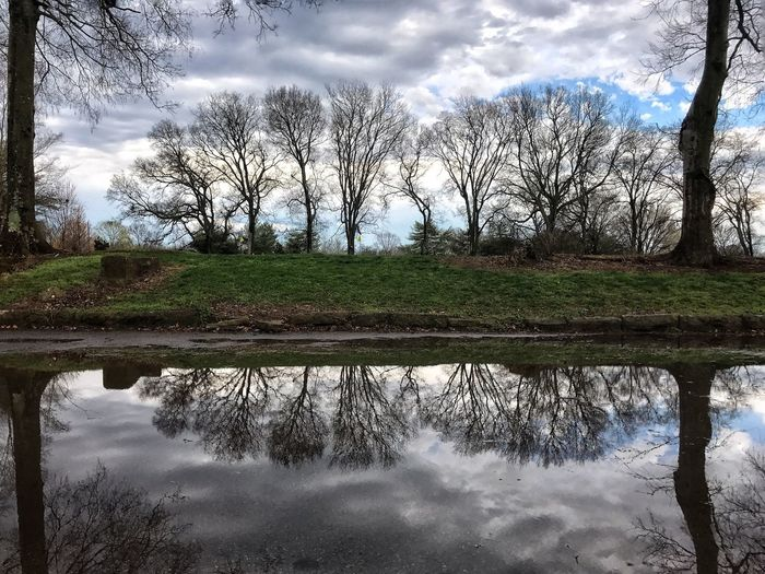 After the storm. Reflection Water Nature Tree Sky Tranquility Tranquil Scene Beauty In Nature Outdoors Scenics No People Day Cloud - Sky Growth Bare Tree Landscape Stormy Sky Iphonephotography Puddleography Puddle Reflections Puddlegram Puddlephotography IPhone 7 IPhone 7 Plus Storm Art Is Everywhere Break The Mold Perspectives On Nature