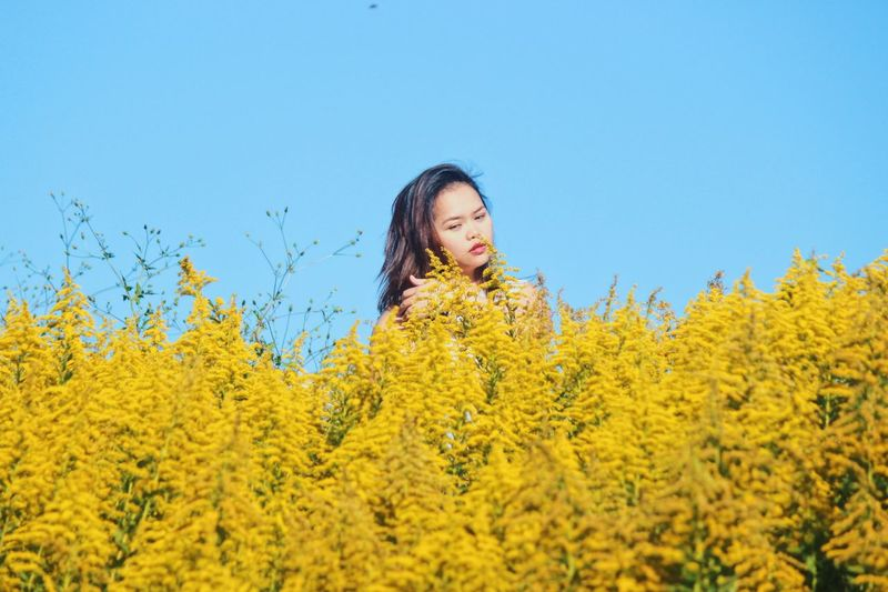 Decide what makes you happy. Sightseeing flower collection portrait of a Sightseeing Flower Collection Portrait Photography Portrait Portrait Of A Woman Beautiful Naturelovers Nature Photography Nature_collection Yellow One Person Plant Growth Nature Clear Sky Sky Beauty In Nature Real People Leisure Activity Lifestyles Day Flowering Plant Flower Blue Copy Space Women Land Standing Outdoors