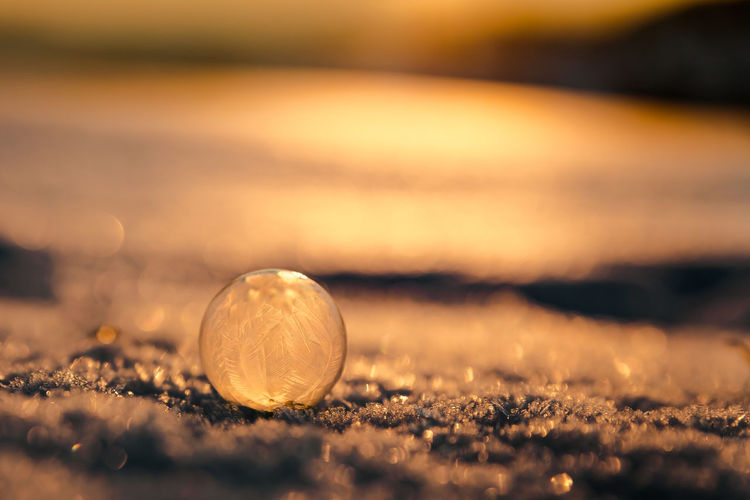 Close-up of bubble on field during winter
