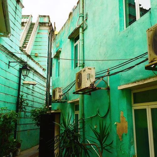 Macao, mon amour Macau Taipa  China Building House Green Streetphotography Flaneur Nostalgia