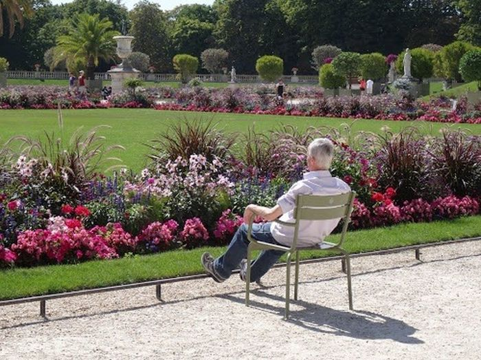 Shadow side Jardin Luxembourg Flowers Summertime Beauty Age