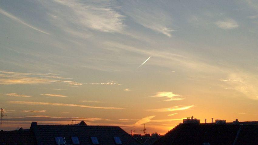 Goos morning! Outdoors Tree Cityscape Day Cloud - Sky Sundawn Dawn City City Skyline Skyline Early Morning Sunrise Sun Over City Silouette Sky