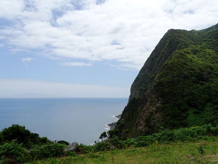 Beauty In Nature Azores Water Sea Tree Beach Tree Area Cliff Mountain Sky Cloud - Sky Landscape Rocky Coastline