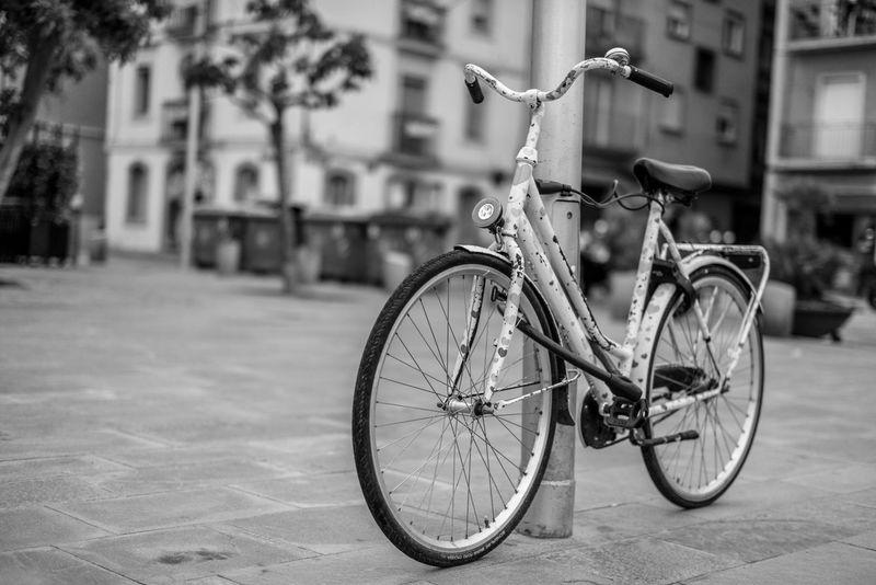 Bike Bicycle Barcelona Barceloneta CarlZeiss Carl Zeiss Sonya7r Sonyalpha Sony Zeiss 50mm 1.4 50mm Sal5014z B&w Blackandwhite Black & White Blackandwhite Photography Black And White Photography Blancoynegro Blancinegre Bicicleta Bici