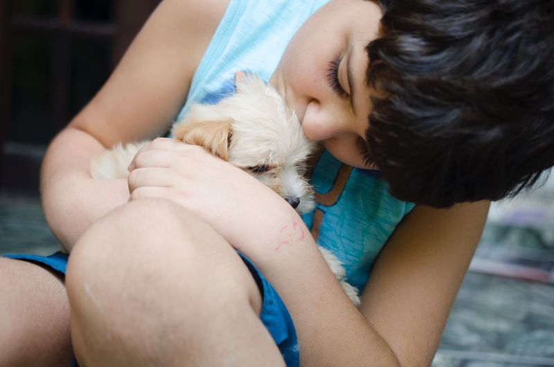Close-Up Of Cute Boy Holding Puppy