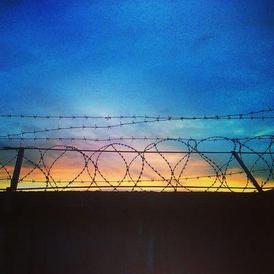 заключенный закат или Это мы заключенные Sky Evening Sunset Wire Vscocam