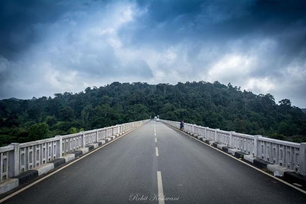 Waytoheaven EyeEm Selects Tree Road City Mountain Sky Landscape Cloud - Sky First Eyeem Photo