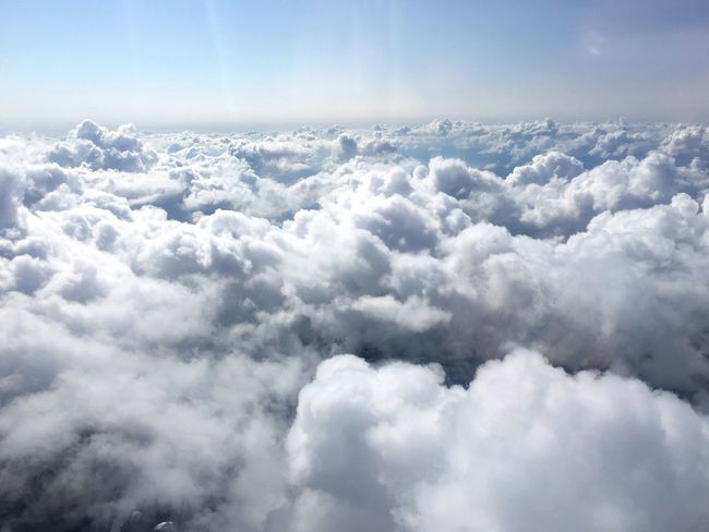 My head is in the clouds today Beauty In Nature Cloudscape Scenics Majestic Tranquil Scene Tranquility Cloud - Sky Blue Nature Cloud Softness Idyllic Sky Awe Fluffy Aerial View Heaven Day Environment Clear Sky