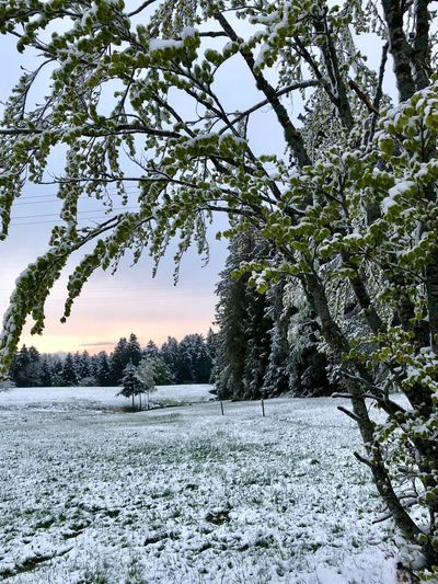 Winter im Mai 2019