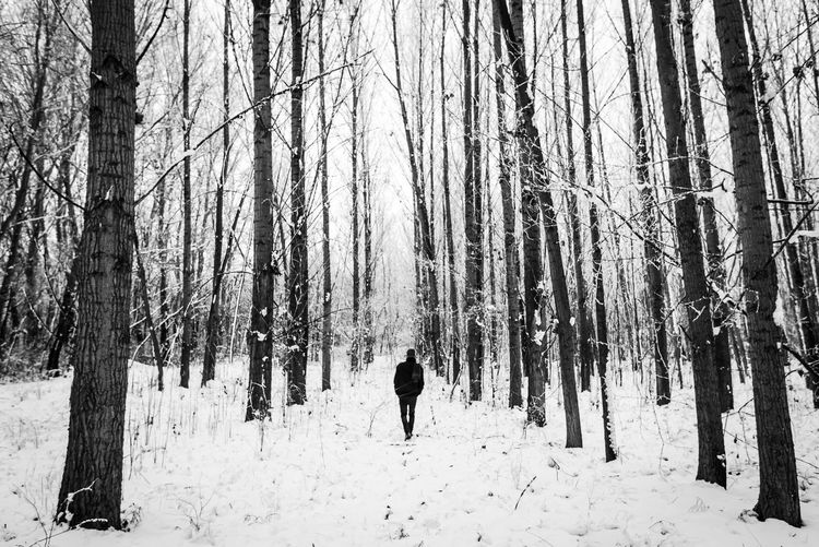 Day Leisure Activity One Person Rear View Covering Lifestyles WoodLand Real People Tree Trunk Trunk Winter Cold Temperature Snow Forest Outdoors Nature Beauty In Nature Plant Land Tree Black And White Blackandwhite Monochrome