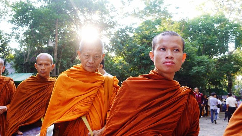 Monk  Buddhist Buddhism Alms Round Alms Giving Chiang Mai | Thailand