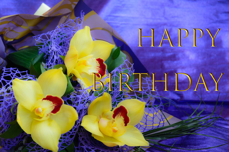 Happy Happy Birthday :) Happy Birthday Orhideya Beauty In Nature Blooming Close-up Day Flower Flower Head Fragility Freshness Growth Happy Birthday! Nature No People Orhid Flower Orhids Outdoors Petal Purple Text Yellow Yellow Orchids букет