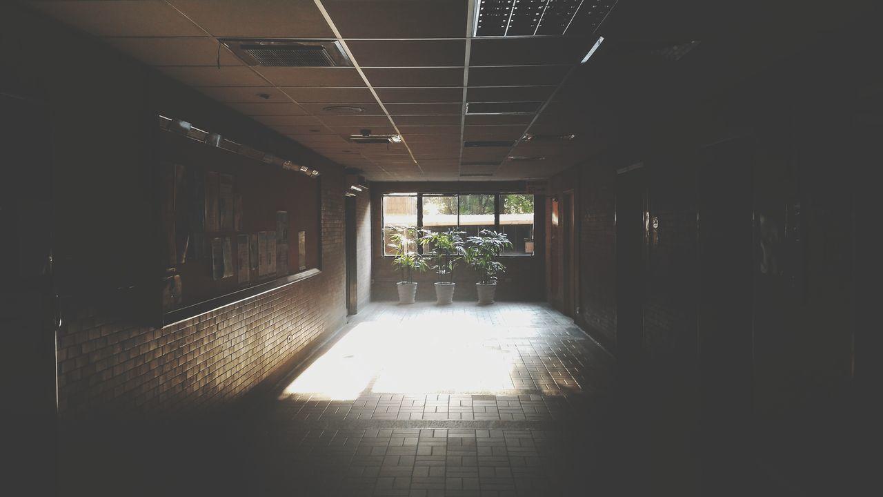 Sunlight Lit Dark Corridor