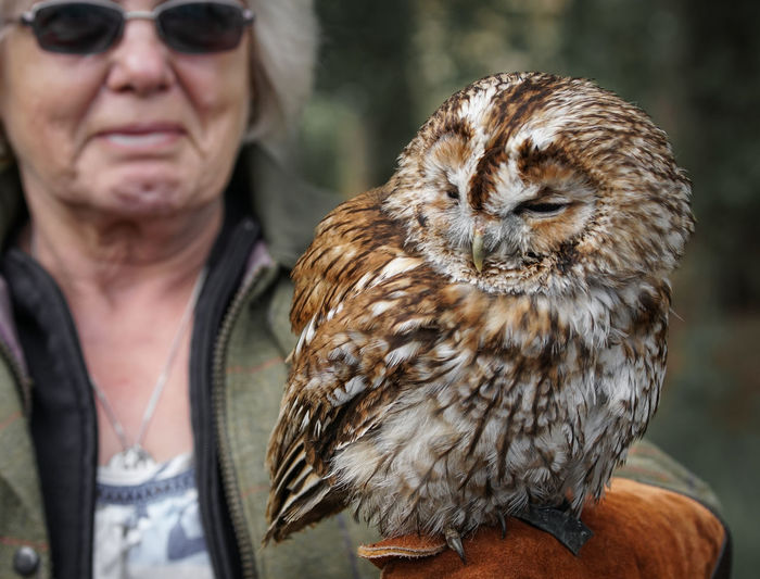 lady and owl Adult Animal Wildlife Animals In The Wild Bird Day Focus On Foreground Front View Leisure Activity Lifestyles Mature Adult One Animal One Person Outdoors Portrait Real People Vertebrate Women