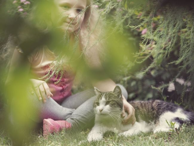 Dream team - MAinLoveWithLife and Little Girl In Love With A Cat Cat Love Cat Lovers Cat Cats Domestic Cat Feline Pets Children Children Photography Childhood Love Animal Love Portrait Portrait Photography Portraiture Portraits Moments Of Life Dreaming Dreamy Dream How I See The World - 17.06.2017 - BadLippspringe