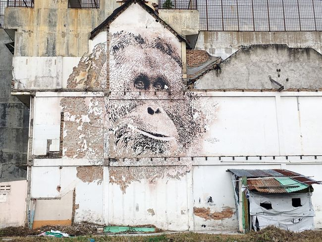 Orang Utan Mural Built Structure Architecture Building Exterior Wall - Building Feature No People Day Building Abandoned Weathered Graffiti Window Outdoors House Old #urbanana: The Urban Playground