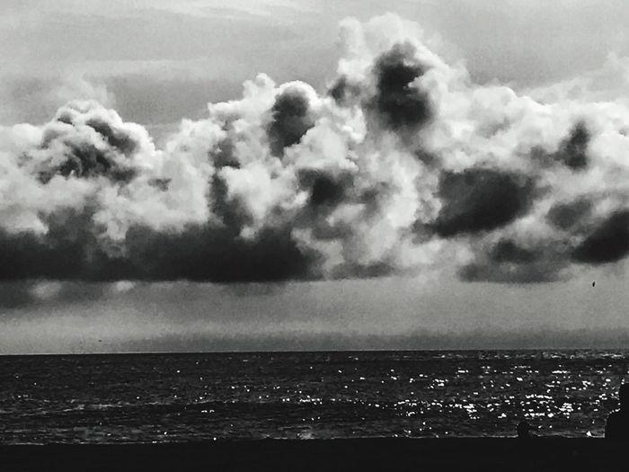Alone Horizon