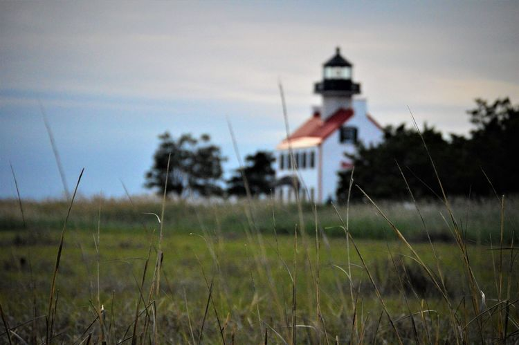 Dusk Sky Lighthouse Nature Architecture Bay Beach Beauty In Nature Building Exterior Built Structure Day Field Focus On Foreground Grass Growth Nature No People Outdoors Red Roofs Reeds Scenic View Sky Tall - High