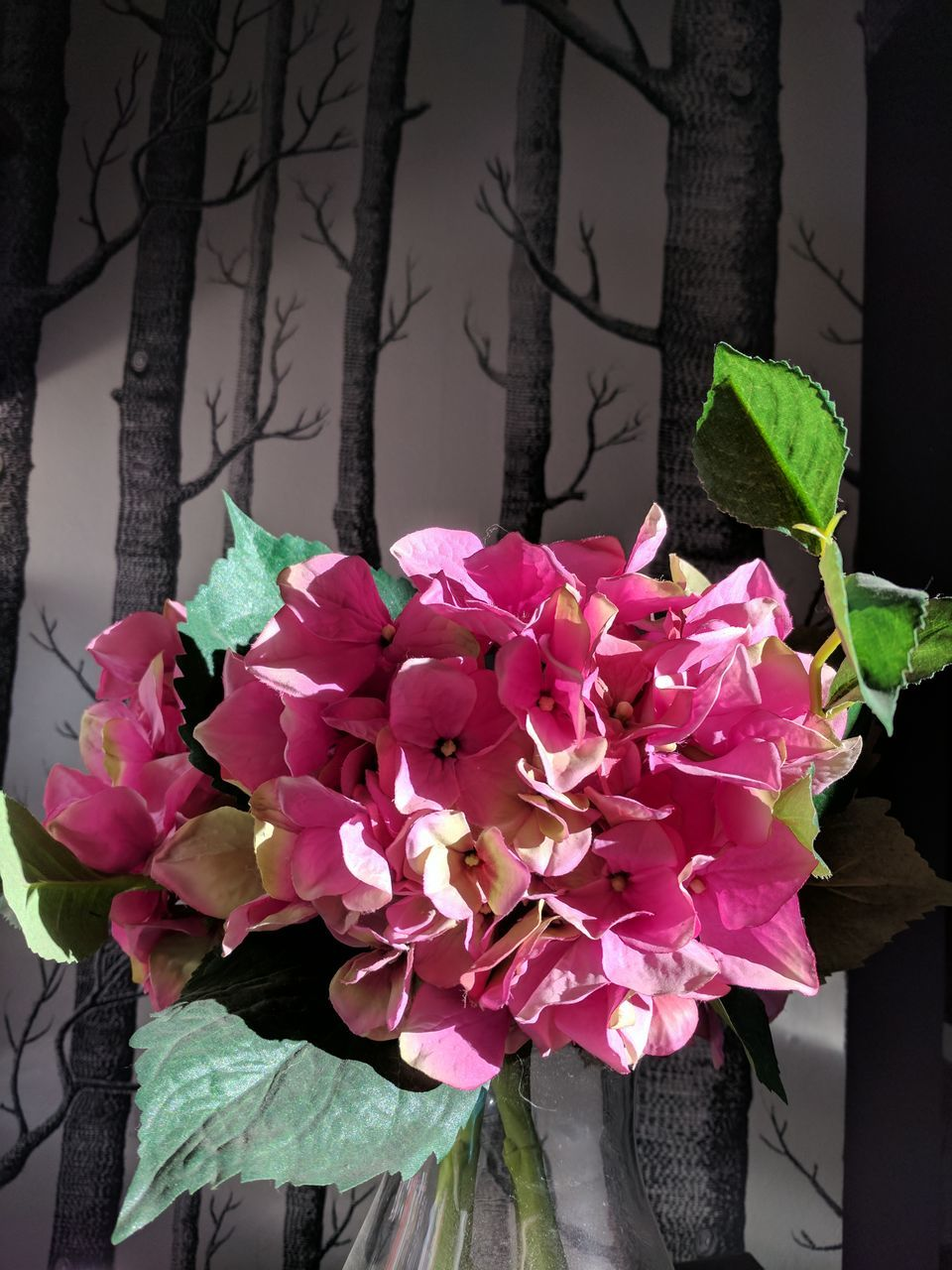 flower, pink color, petal, beauty in nature, nature, leaf, plant, fragility, growth, no people, day, flower head, outdoors, freshness, close-up, bougainvillea, blooming