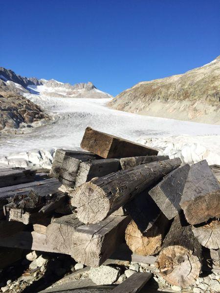 Tree Tree Trunk Sky Snow Glacier Switzerland Furkapass Cold Texture
