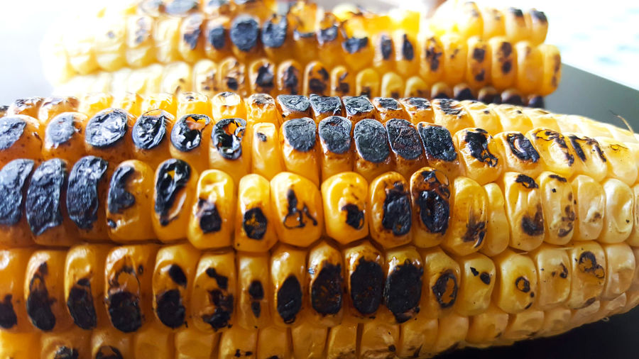 joy of summer BBQ Burned Grilled Corn Hot Summertime Black Close-up Corn Corn On The Cob Focus On Foreground Food Food And Drink Freshness Gril Grill Grilled Corn On The Cob In A Row Indoors  Indulgence No People Pattern Retail  Side By Side Still Life Temptation Wellbeing Yellow