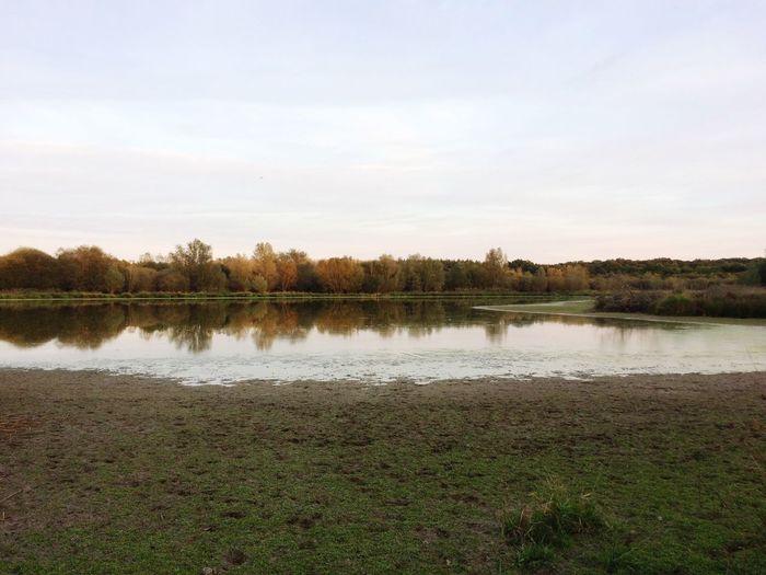 L'étang en sologne Sologne