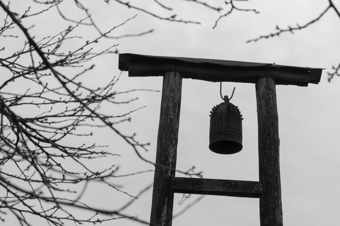 Winter Winter Sky Japan Bell Sky Sony Rx100 Sony Rx100 Bell Tower Japan Photography Branch Branches Branches And Sky Wintertime Winter Time