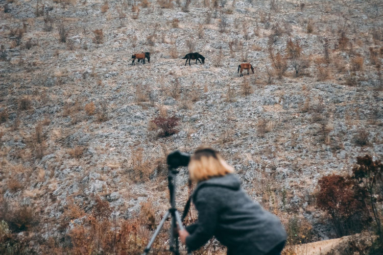 Photographer taking pictures of horses in the wild, stallion grazing on the opposite side of hill Real People Leisure Activity People Rock Solid Rock - Object Photography Themes Lifestyles Adult Women Photographing Standing Activity Nature Outdoors Rear View Men Rock Formation Animal Themes Animals In The Wild Wildlife Horses Wild Horses My Best Photo 17.62° International Women's Day 2019