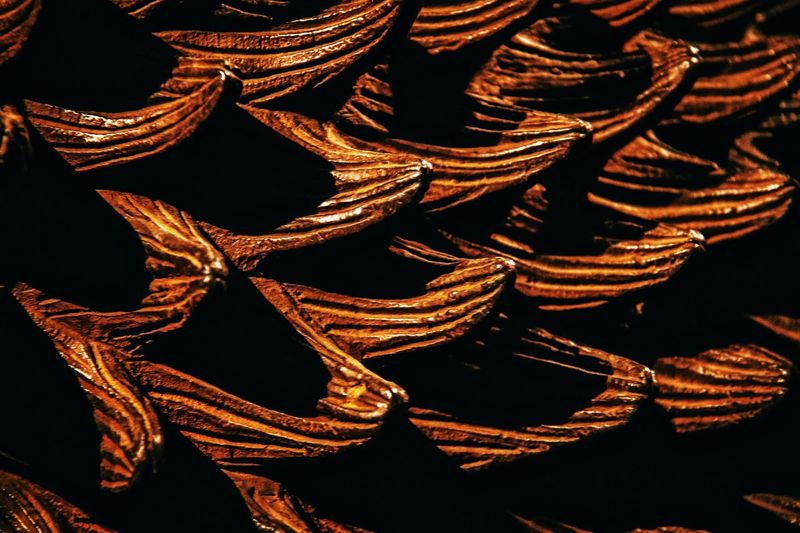 Bronze skin Pattern No People Close-up Backgrounds Black Background Indoors  Day EyeEm Best Shots Art Bronze Italy Skin