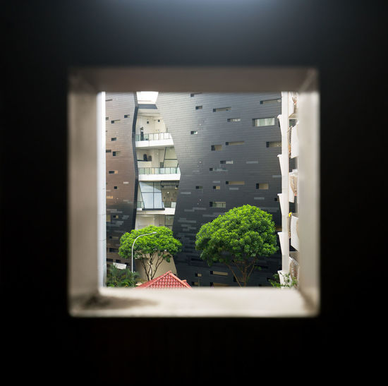 A framed view (Somehow I missed out posting these photos) Apartment Architecture Building Built Structure City Close-up Day Focus Glass - Material Growth House Indoors  Nature No People Plant Residential District Transparent Window