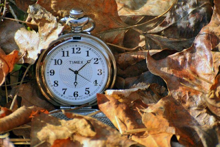 Still life watch pocket time fall season