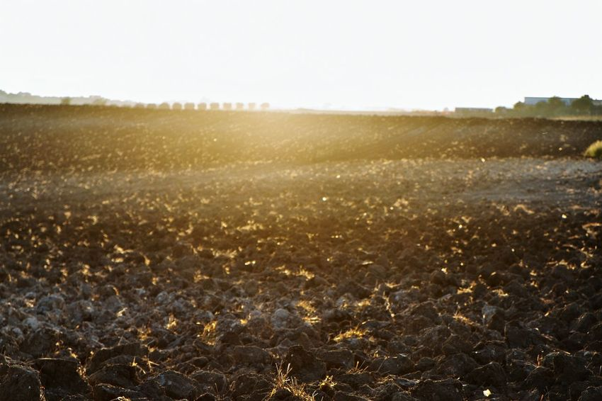 Ground And Sky Soil And Sun Farmland Terrain Agricultural Land Agricolture Ploughed Clump Raw Brown