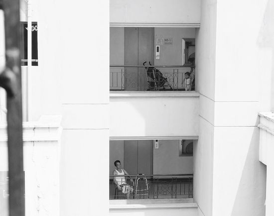 "Was contemplating about life when I saw this outside my window. ""Life Cycle"" Eyeem Philippines EyeEm Best Shots Life Truth Age Philippines"