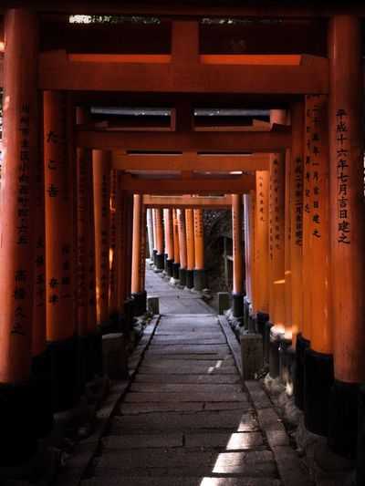 Thousand of torii gate leading up to the TOP of Mount inari at Fushimi Inari Shrine. Fushimi Inari Shrine Kyoto Japan Architecture Built Structure The Way Forward Direction Architectural Column No People Diminishing Perspective Building In A Row Nature Footpath