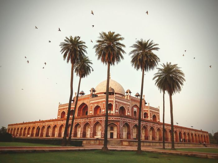 Excellent example of persian architecture & mughal architecture..Humayun's Tomb Architecture History UNESCO World Heritage Site Incridible India Naturephotography Heritage Site EyeEmNewHere Grass Tree Beauty In Nature Landscape Travel Destinations Birds Day Sky Ancient Travelling India Travelphotography Mobilephotography