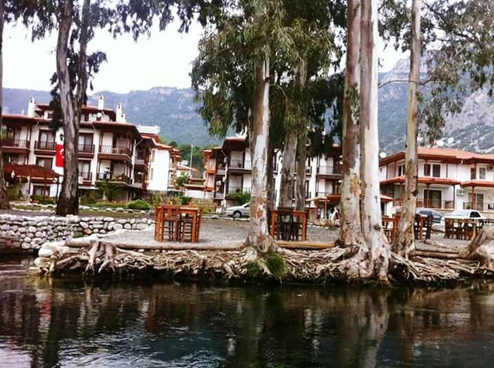 Tree Water Building Exterior Architecture Palm Tree Built Structure Outdoors City No People Day Sky Beauty In Nature Azmakçayı Summer Azmak Sea Nature Mugla Fethiye Muğla Akyaka Holiday And Relaxing