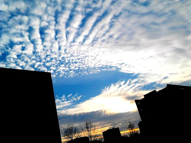 Cloud_collection  Skyporn Sky And Clouds Sky Collection Blue Sky Skylovers