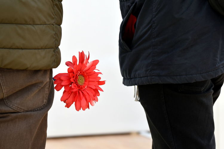 Rear view of people standing with red flower in pocket