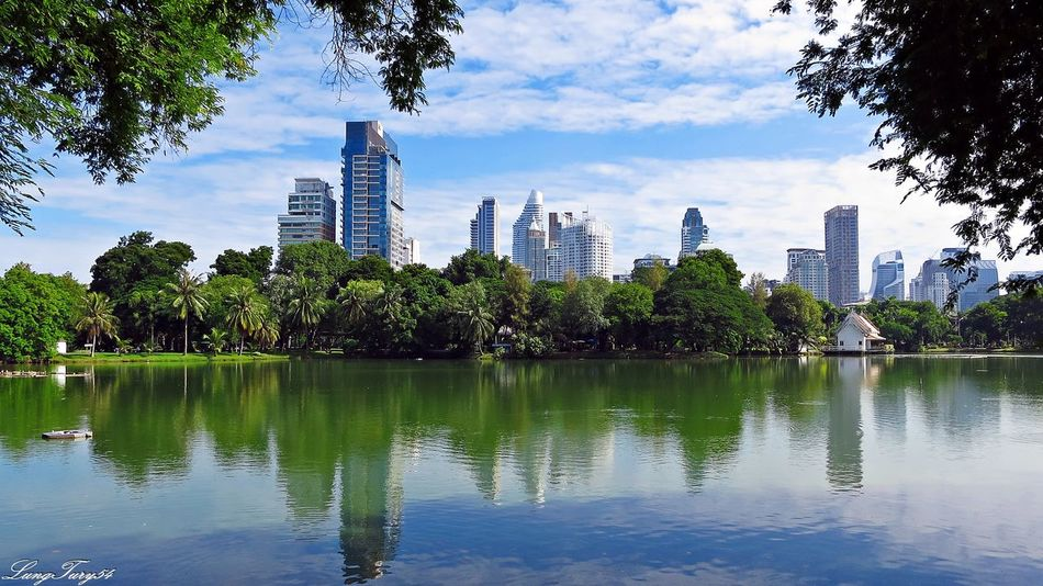 Lumpini Park Architecture Bangkok City City Life Lumpini Park Park Reflection Thailand Water Waterfront