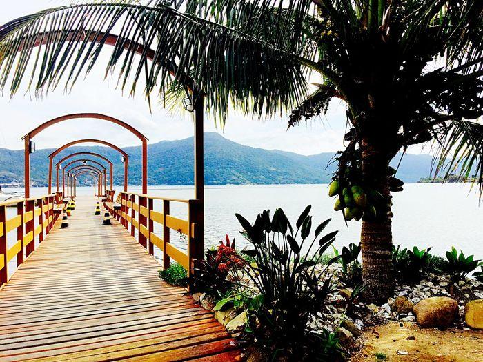 World Photography Day A place to enjoy and relax! Lagoa Da Conceição Santa Catarina Brazil
