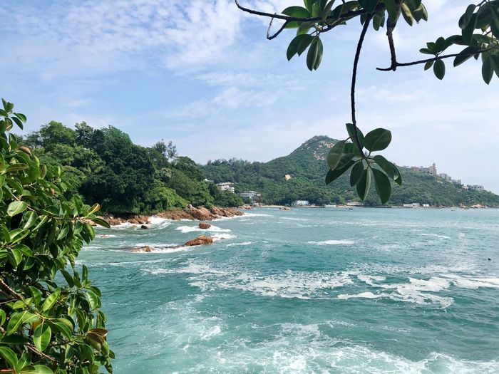 Chek Chue Seafront Waves Sea Relaxing Green View HongKong Travel Destinations Tree Water Plant Sky Cloud - Sky Nature Day Beauty In Nature Waterfront Tranquility Scenics - Nature No People Outdoors Green Color Non-urban Scene Flowing Water