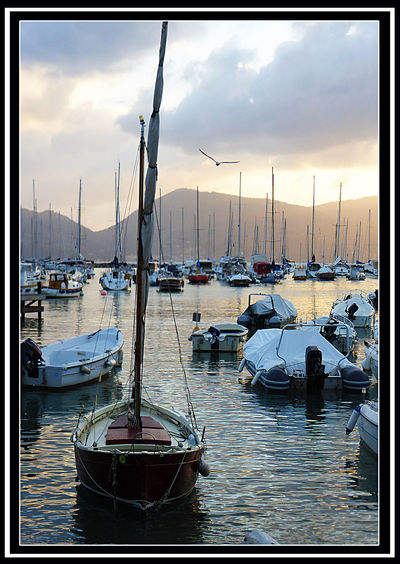 Vita d'Amare Tranquility Molo Photography Sunset Beachlife Beautiful Photographic Memory Travel Photography Travelling Liguria Estate Sunset_collection Easytravel Water Water Reflections Colori