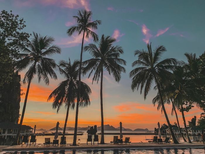 #sunset Sky Water Sunset Tree Plant Beauty In Nature Sea Nature Transportation Land Beach Scenics - Nature Palm Tree Tranquility Orange Color Cloud - Sky Silhouette Tranquil Scene No People Outdoors