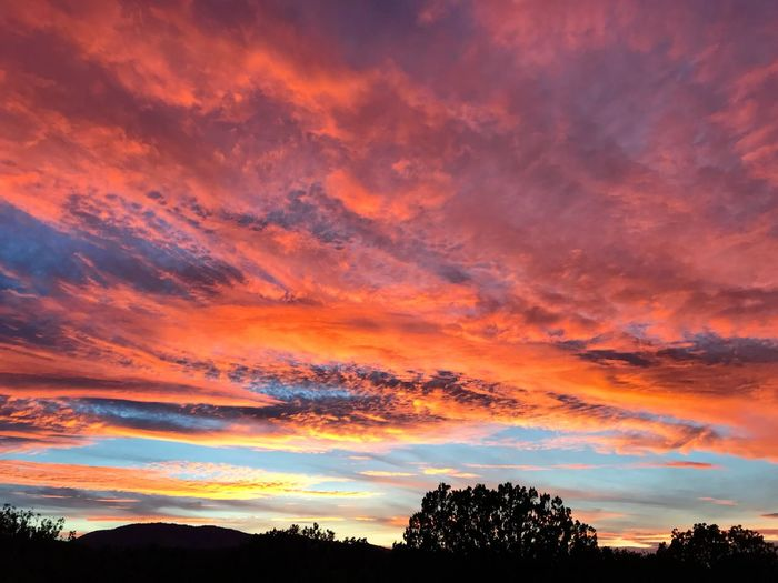 """Glory Nights"" A stunning Central New Mexico sunset glorifies the evening sky. New Mexico Skies New Mexico Photography New Mexico Evening Sky Sunset_collection Silhouettes Sunsets Sunset Beauty In Nature Orange Color Scenics Tree Tranquil Scene Silhouette Dramatic Sky Sky Cloud - Sky"