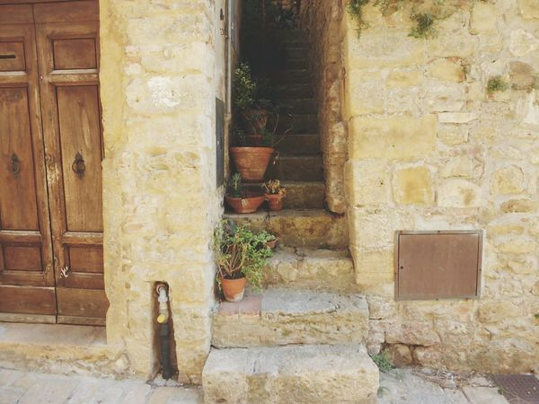 typically italy❤ Plants Stairs To Nowhere Architecture Building Exterior House Built Structure Plant Door Outdoors Day No People Residential Building Growth Nature Scenics
