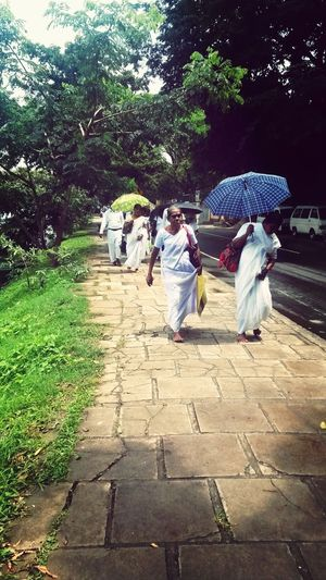 Womens Walking Around Traveling In Sri Lanka