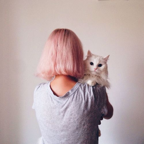 Domestic Cat Domestic Animals Pets One Animal Animal Themes Mammal One Person Feline Looking At Camera Portrait Cat Real People Indoors  People Day