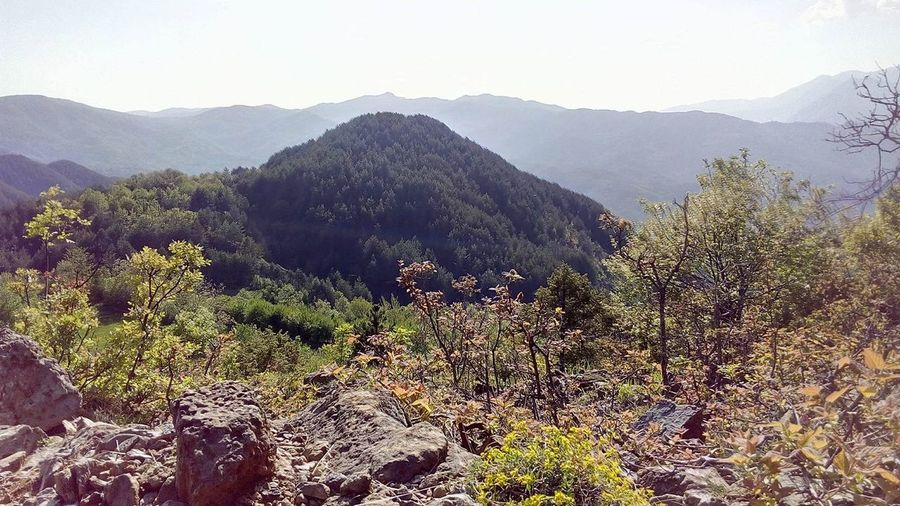 Albania North