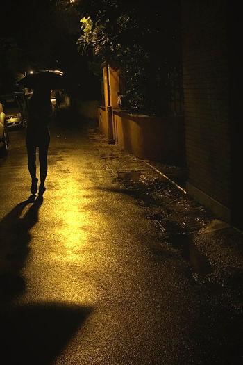 L'ombra Night